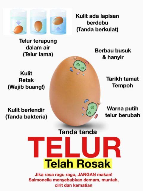 cara untuk tahu telur rosak